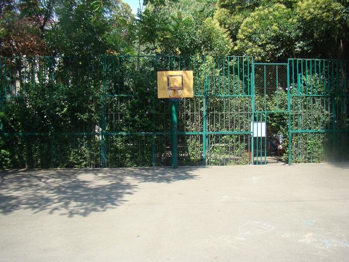 Баскетбол Сочи Роз