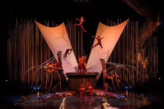 Varekai Russian Swings