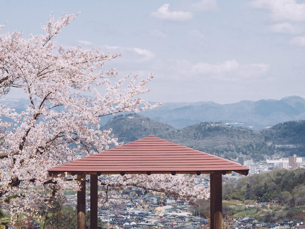 Что японского есть в Сочи?