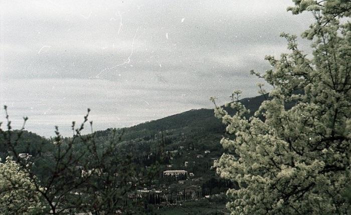Хоста Сочи 1952