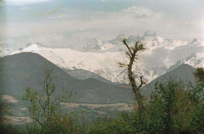 Вид на горы Сочи 1951-1954