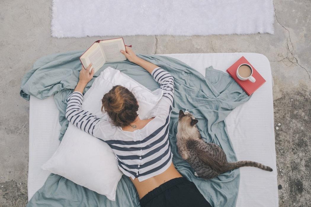 Книга кот девушка