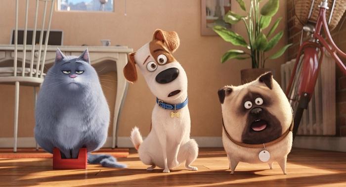 Тайная жизнь домашних животных кадр из фильма