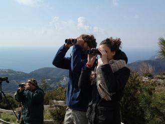 Бердвотчинг birdwatching