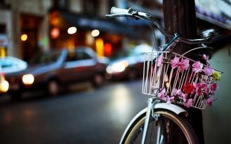 Велосипед цветы