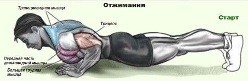 7-uprazhnenij-dlya-tvoego-tela