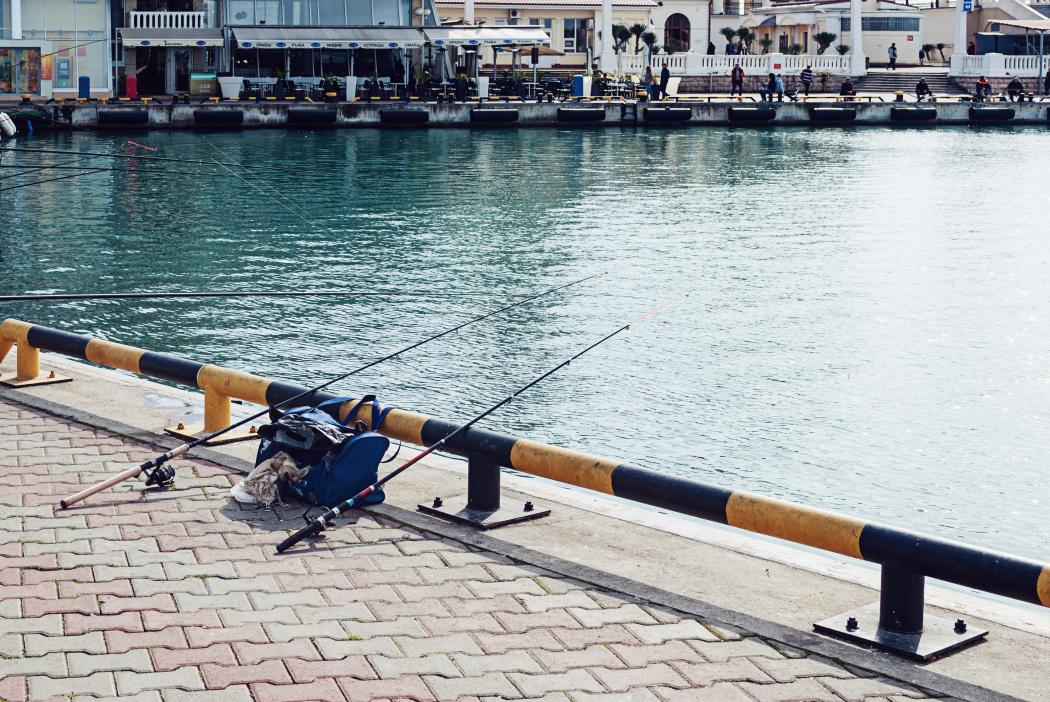 Сочи центральная набережная рыбак